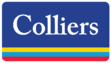 Colliers_Logo_Color_Gradient (With Border).png